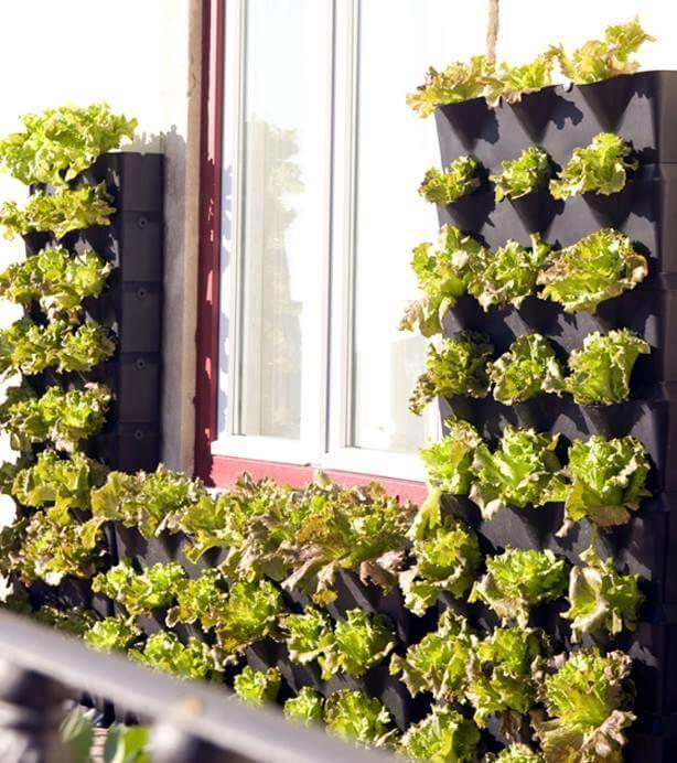 Balkonski vrt homeogarden for Balcony garden ideas in dubai