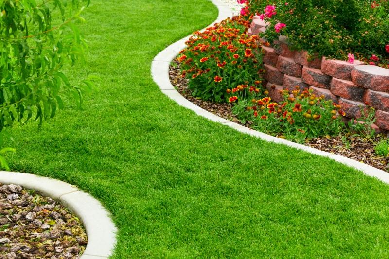 Kako imati prekrasnu zelenu travu bez kemije?