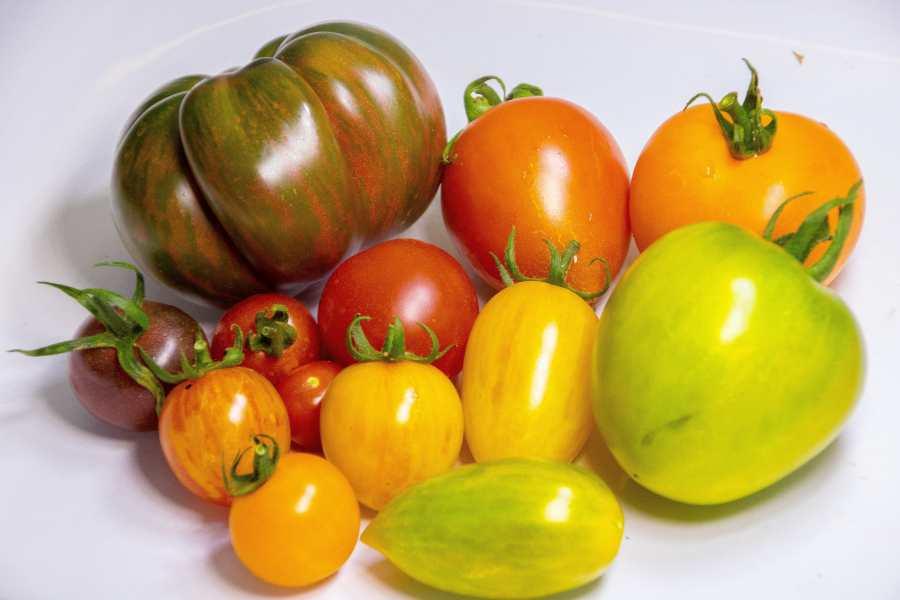 Volite li rajčice?