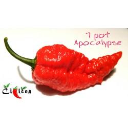 7-pot-apocalipse-homeogarden